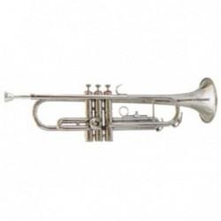 Trompeta Amadeus TP807N Sib Niquelada, campana Bronce y...